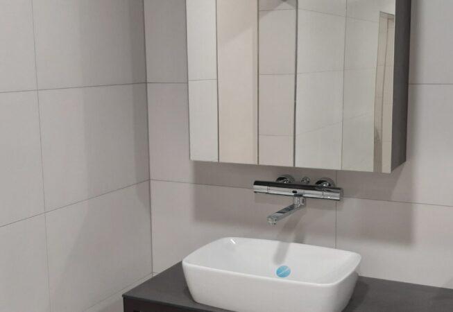 koncept toalet